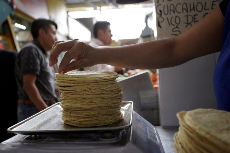 © Reuters. FILE PHOTO: An employee weighs a stack of freshly made corn tortillas at a tortilla factory in Mexico City