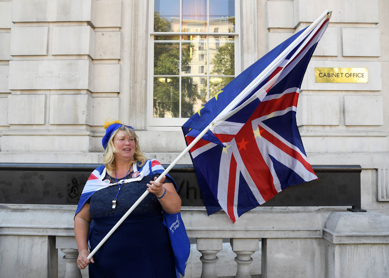 © Reuters. FILE PHOTO: An anti-Brexit protester is seen outside the Cabinet Office in London