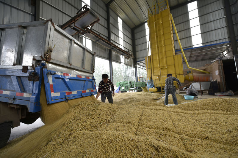 China grants new tariff waivers for U.S. soybean imports: Bloomberg By Reuters