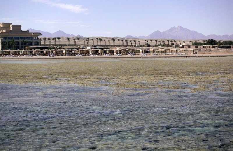 © Reuters. FILE PHOTO: Tourists relax during a low tide at the beach of the Red Sea resort of Sahl Hasheesh, Hurghada