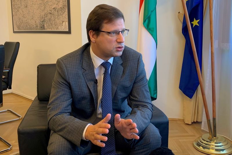 © Reuters. FILE PHOTO: Gergely Gulyas, Hungarian Prime Minister Viktor Orban's chief of staff speaks during an interview in his office in Budapest